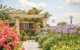 Aged Care Garden