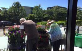 Aged Care Garden Care
