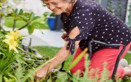 Retirement Village Gardening around your home