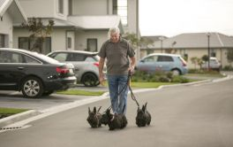 Retirement Village Pets are welcome